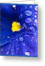Just Watered Greeting Card