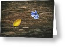 Juxtaposition Greeting Card