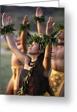 Kahiko Hula Dancers Greeting Card