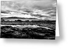 Kaikoura Coast New Zealand In Black And White Greeting Card