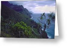 Kalalau Beginnings Greeting Card