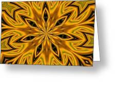 Kaleidoscope 14 Greeting Card
