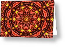 Kaleidoscope 42 Greeting Card