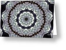 Kaleidoscope 63 Greeting Card