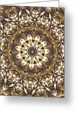 Kaleidoscope 68 Greeting Card