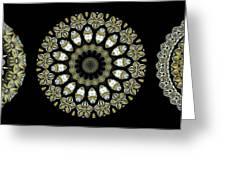 Kaleidoscope Ernst Haeckl Sea Life Series Steampunk Feel Triptyc Greeting Card