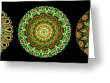 Kaleidoscope Ernst Haeckl Sea Life Series Triptych Greeting Card
