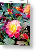 Kaleidoscope Of Roses Greeting Card