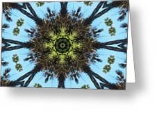Kaleidoscope Palms Greeting Card