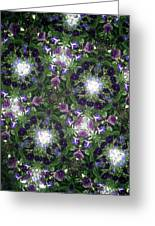 Kaleidoscope Violets 2 Greeting Card