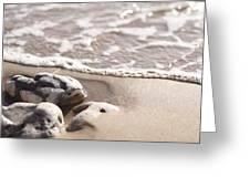 Kamaole Beach Rock Greeting Card