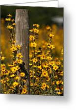 Kansas Bouquet Greeting Card
