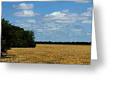 Kansas Fields Greeting Card