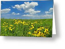 Kansas Prairie Greeting Card