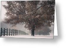 Kansas Snowstorm - Tree And Fence Greeting Card