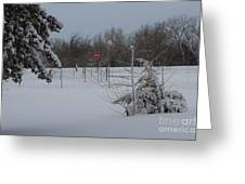 Kansas Snowy Landscape Tree's And Fence Greeting Card