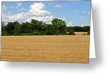 Kansas Wheat Field 3a Greeting Card