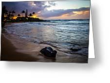 Kapa'a Kauai Sunrise Greeting Card