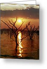 Kariba Sunset Greeting Card