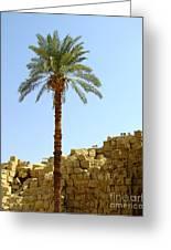 Karnak Temple 12 Greeting Card