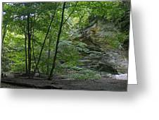 Kaskaskia Canyon Greeting Card
