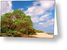 Kauai Beach Greeting Card