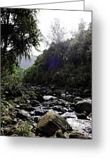 Kauai River Greeting Card