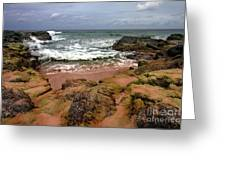 Kauai Seascape I Greeting Card by Maxwell Amaro