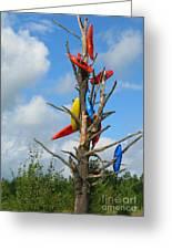 Kayak Tree Greeting Card