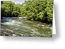 Kayaking On Gull River Greeting Card