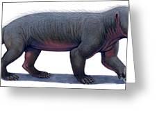 Kayentatherium, A Mammal-like Greeting Card