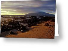 Keawakupu Beach Lava Evening Light Maui Hawaii Greeting Card