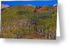 Kebler Pass Panorama Greeting Card