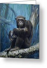 Keeper Of The Congo Greeting Card