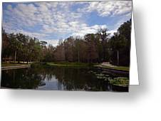 Kelly Park Springs Greeting Card