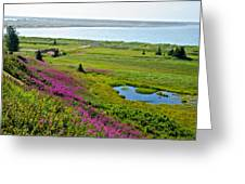 Kenai River Outlet On The Cook Inlet In Kenai-ak Greeting Card