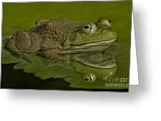 Kermit Greeting Card by Susan Candelario