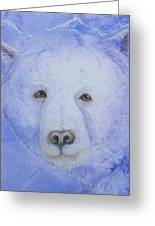 Kermode Bear Greeting Card