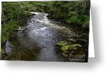 Ketchikan River Greeting Card