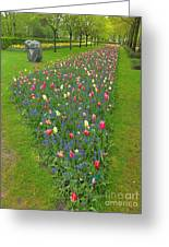 Keukenhof Gardens 26 Greeting Card