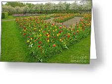 Keukenhof Gardens 29 Greeting Card