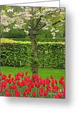 Keukenhof Gardens 34 Greeting Card