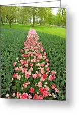 Keukenhof Gardens 41 Greeting Card