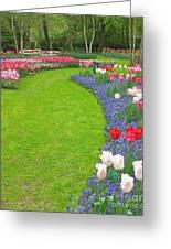 Keukenhof Gardens 54 Greeting Card