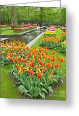 Keukenhof Gardens 70 Greeting Card