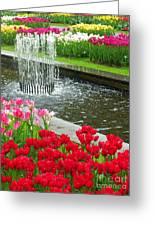 Keukenhof Gardens 71 Greeting Card