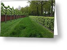 Keukenhof Gardens Panoramic 10 Greeting Card