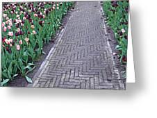 Keukenhof Gardens Panoramic 24 Greeting Card