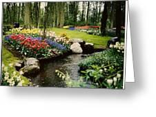 Keukenhof Tulip Gardens Greeting Card