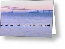 Key Bridge And Waterfowl Greeting Card